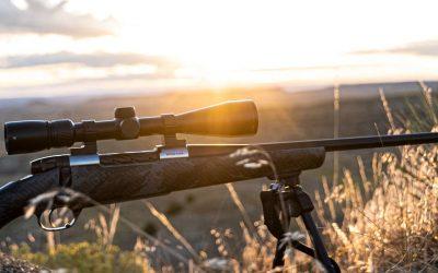 The Best Lightweight Rifles